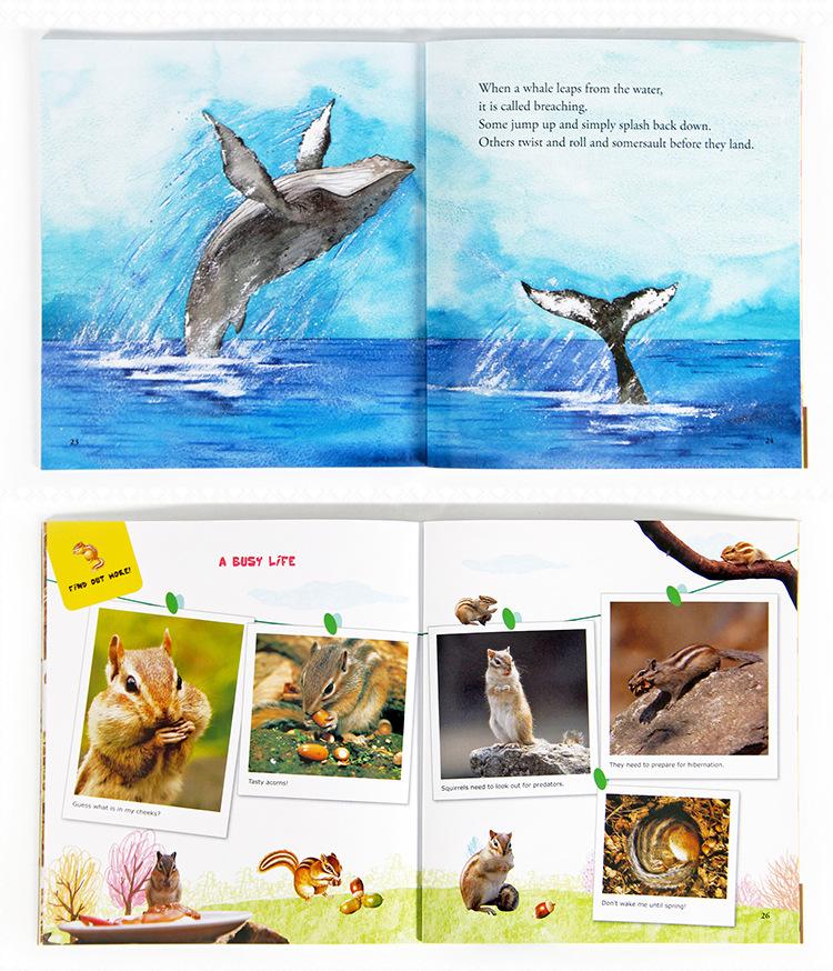 英文绘本-宾果儿童自然科学-第3辑-绘本展示2